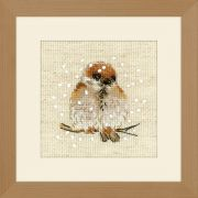 Cross-stitch kit Riolis 1546 - Dreamer