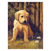 Paint by numbers acrylic kit - Puppy