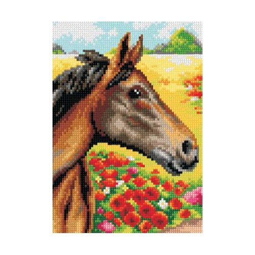 Printed embroidery Orchidea 2431 Stallion and red flowers