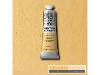 Oil color Winton, 37ml - naples yellow hue 422