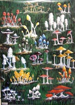Decoupage paper Finmark Forest mushrooms