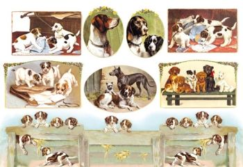 Decoupage paper Stamperia DFS064 Dogs