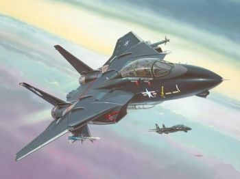 Model military fighter F-14A Black Tomcat - Revell