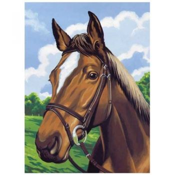 Paint by numbers acrylic kit - Horse