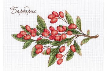 "Cross-stitch kit MP STUDIA SNV-678  ""Barista"""