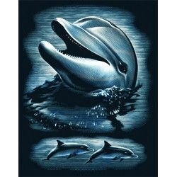 Silver gravure kit - Dolphin